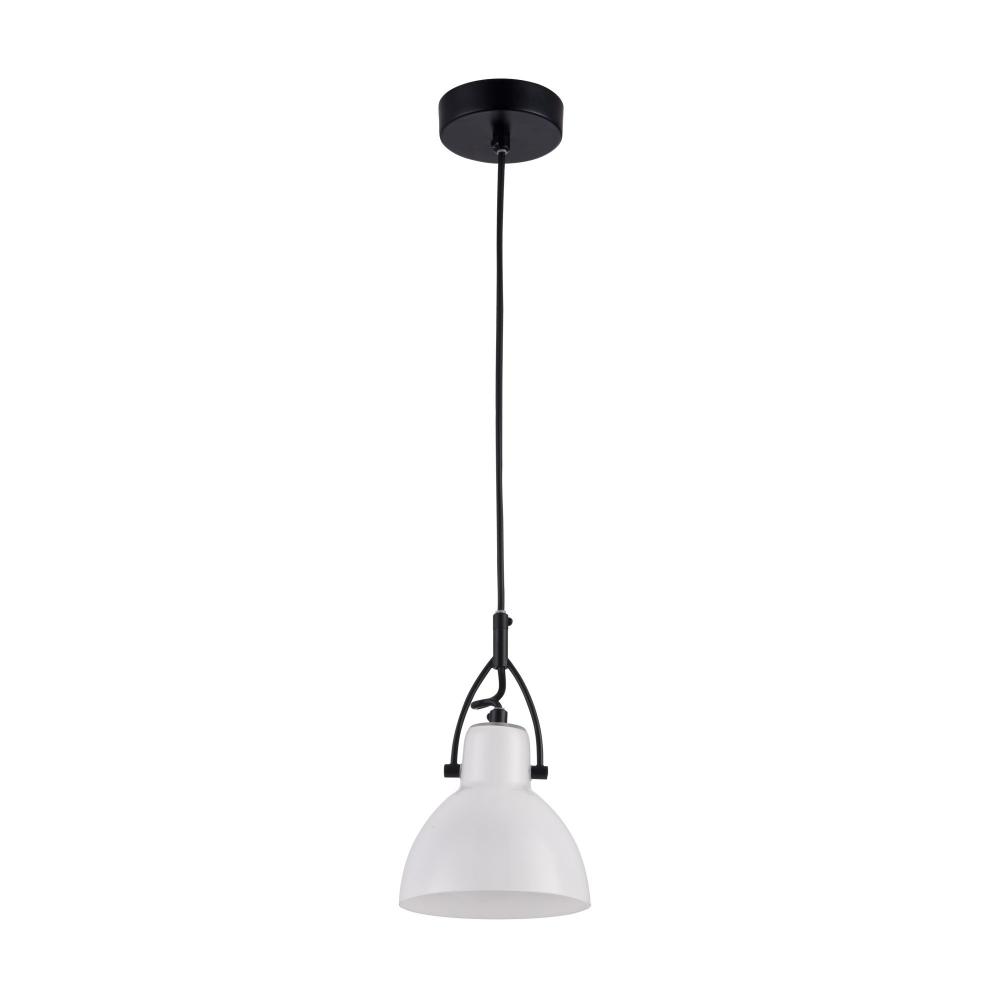 Подвесной светильник Maytoni Daniel MOD407-PL-01-B