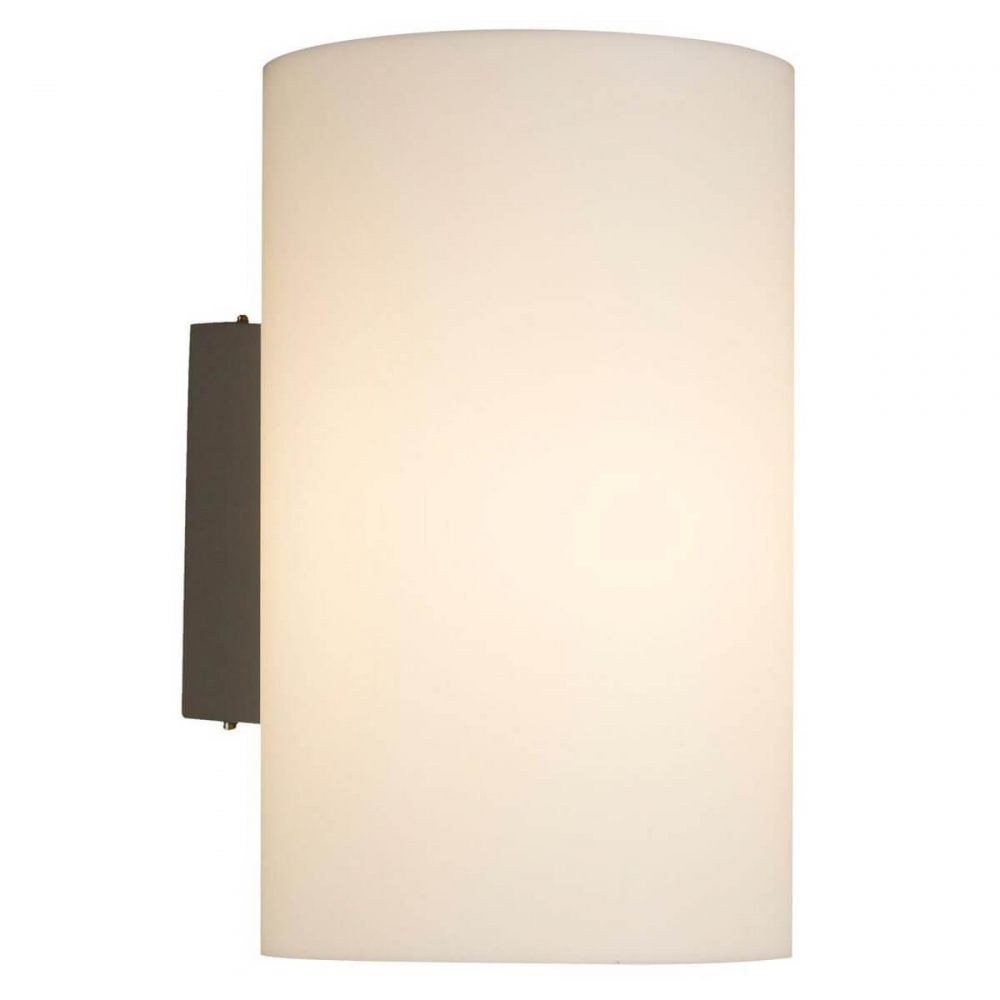 Уличный настенный светильник Maytoni Camden O008WL-01S
